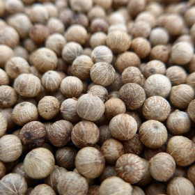 Kampot Bird Pepper PGI