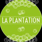 Photo de profil de laplantationkampotpepper